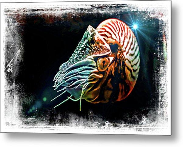 Nautilus Dreams Metal Print