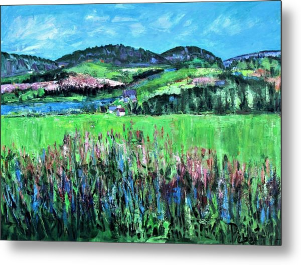 Near Cooperstown Metal Print