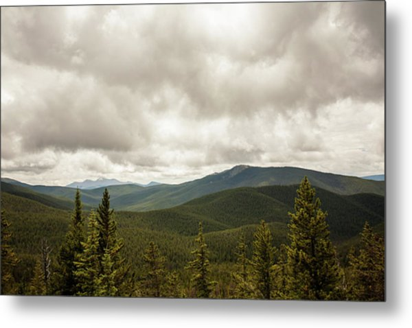 Near Monarch Pass At The Continental Divide Metal Print