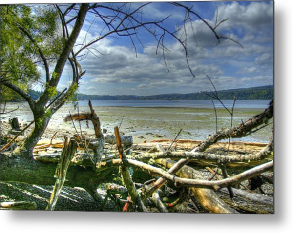 Near Port Gamble Metal Print