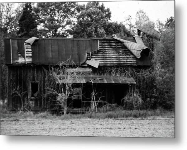 Neglect Metal Print