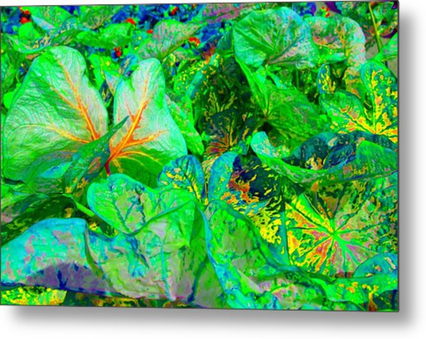Metal Print featuring the photograph Neon Garden Fantasy 1 by Marianne Dow