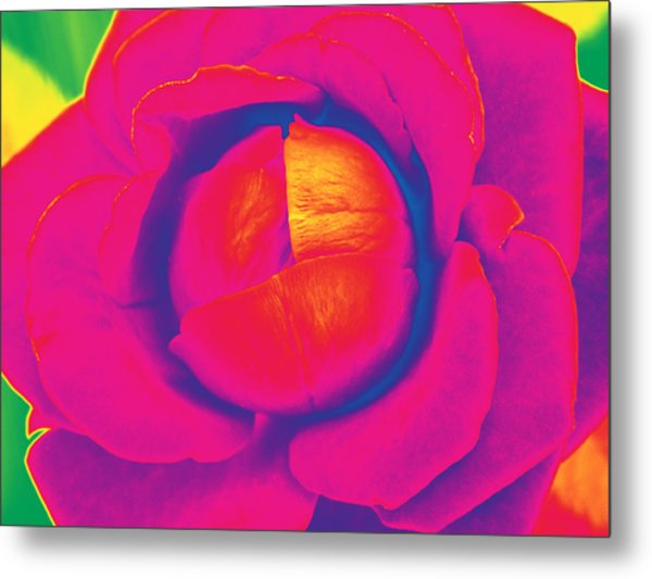 Neon Lettuce Rose Metal Print