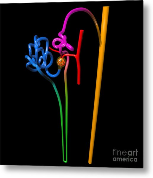 Metal Print featuring the digital art Nephron Black by Russell Kightley