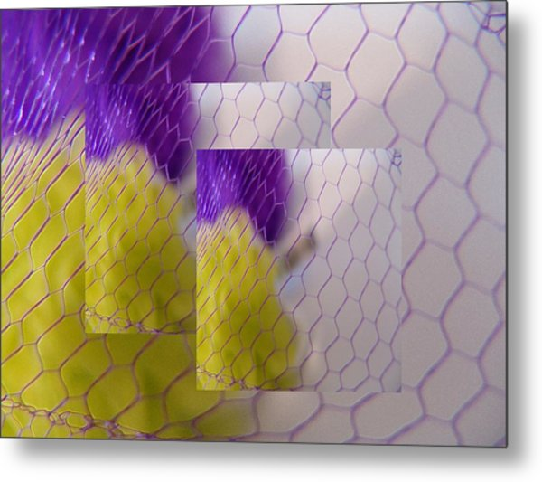 Net Gain II Metal Print