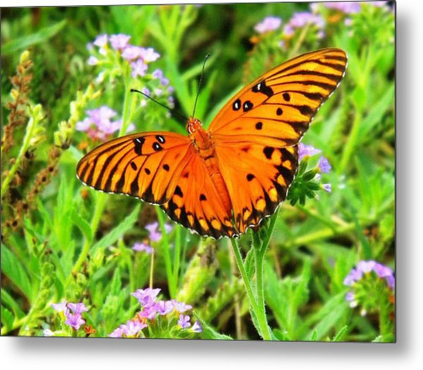 New Beginnings Metal Print