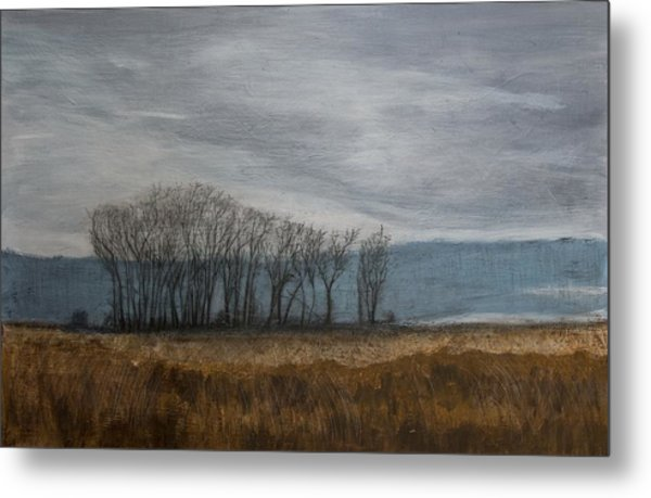 New Buffalo Marsh Metal Print