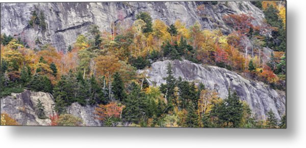 New England Foliage Burst Metal Print by Expressive Landscapes Fine Art Photography by Thom