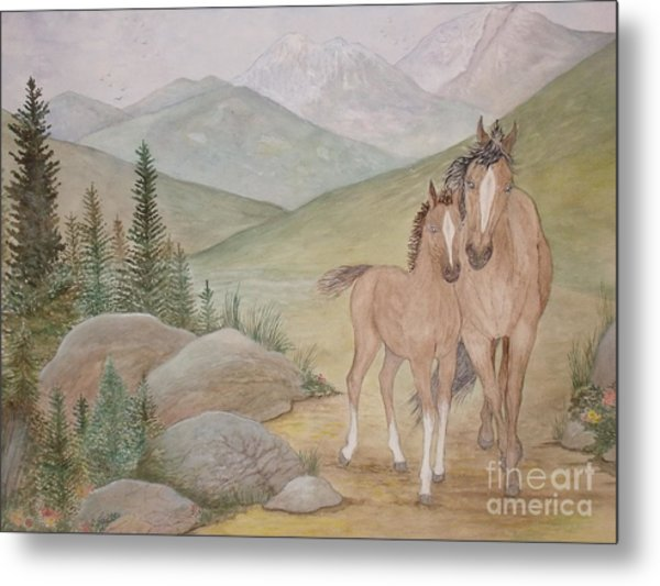 New Foal In The Foothills Metal Print