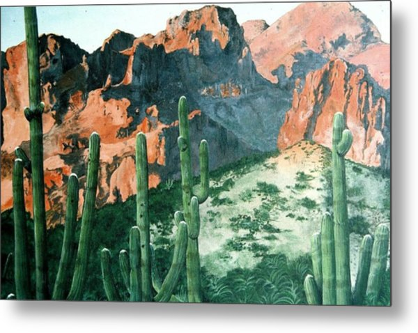New Mexico Metal Print by Terri Kilpatrick