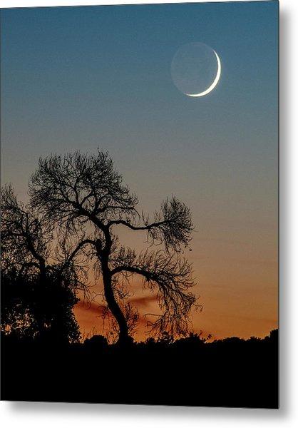 New Moon At Beaver Creek, Arizona, I Metal Print by Dave Wilson