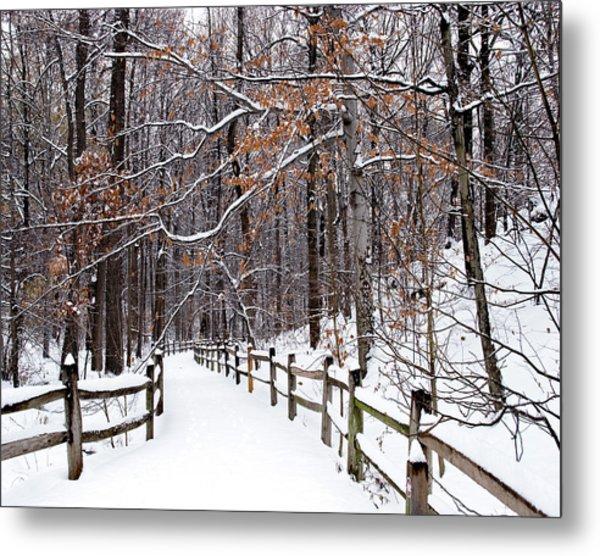 New York Botanical Garden Winter Trail 1 Photograph By Michael Fusco