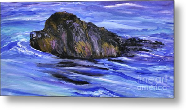 Newfoundland Oil Painting Metal Print by Mary Jo Zorad