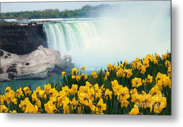 Niagara Falls Spring Flowers And Melting Ice Metal Print