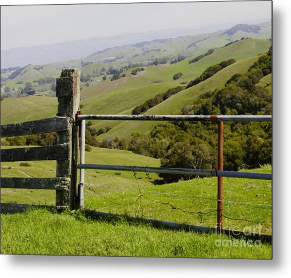 Nicasio Overlook Metal Print