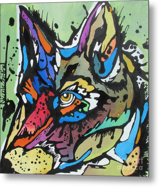 Nico The Coyote Metal Print