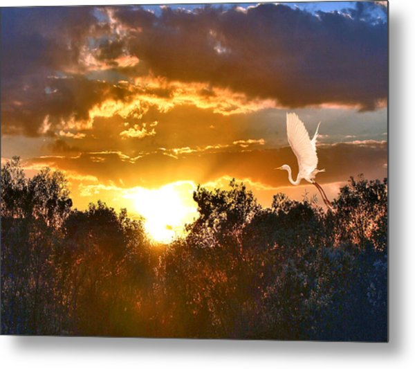 Night Approaches Metal Print