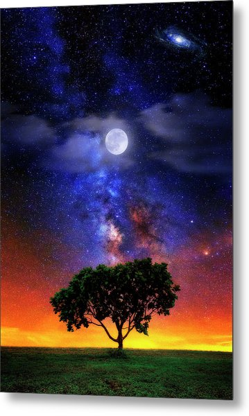 Night Colors Metal Print