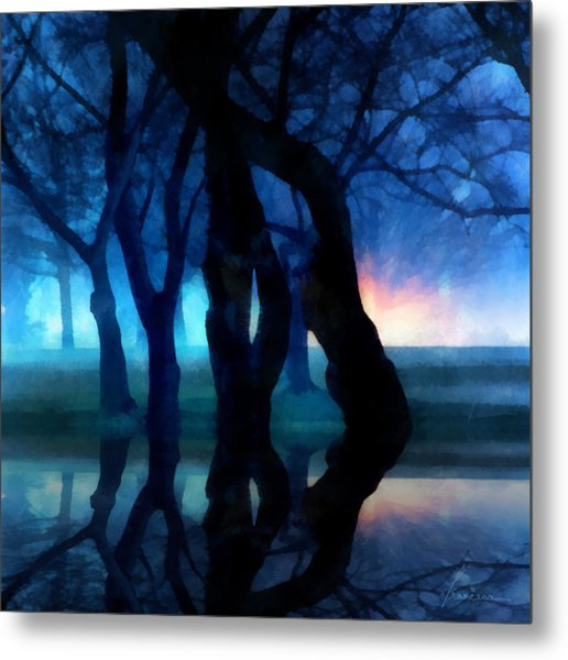 Night Fog In A City Park Metal Print