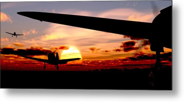 Night Hawks Metal Print