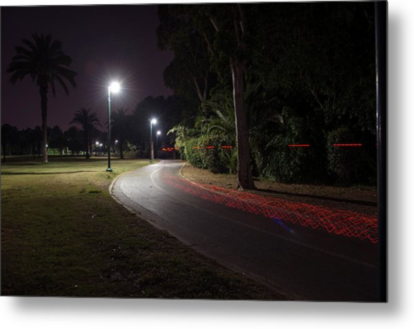 Metal Print featuring the photograph Night In The Park by Dubi Roman