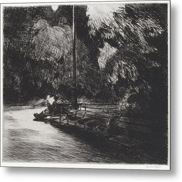 Night In The Park Metal Print