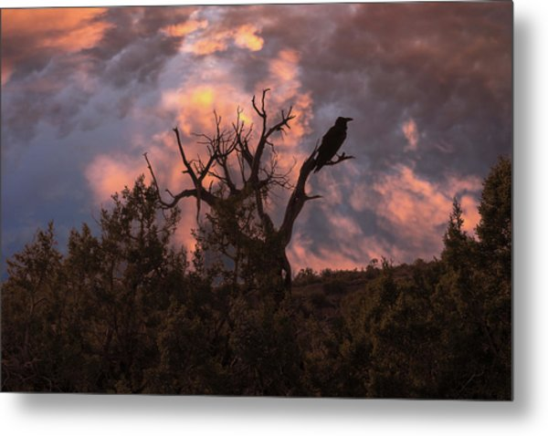 Night Of The Raven Metal Print