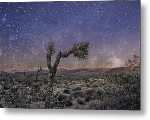 Metal Print featuring the photograph Night Sky by Alison Frank