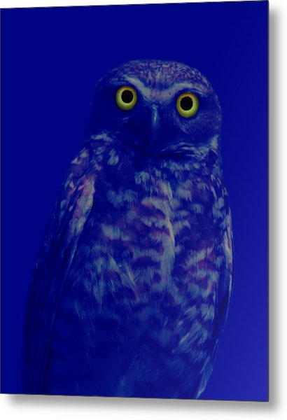Night Stare Metal Print