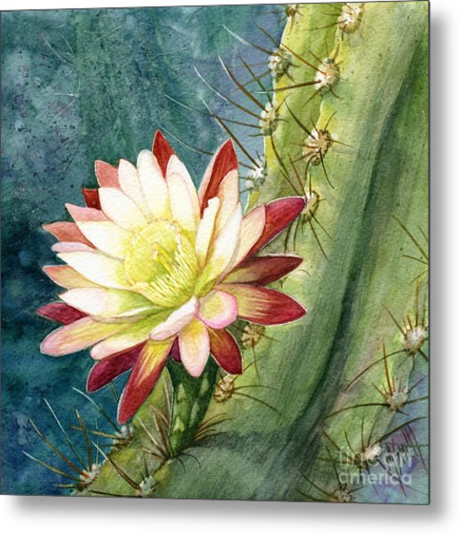 Nightblooming Cereus Cactus Metal Print