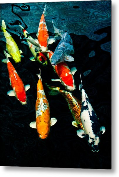 Nine Koi Metal Print
