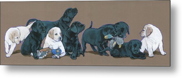Nine Lab Puppies Metal Print