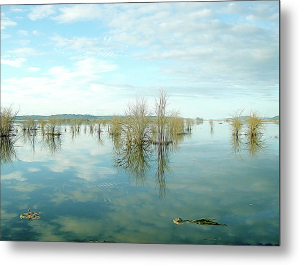 Nisqually High Tide Metal Print