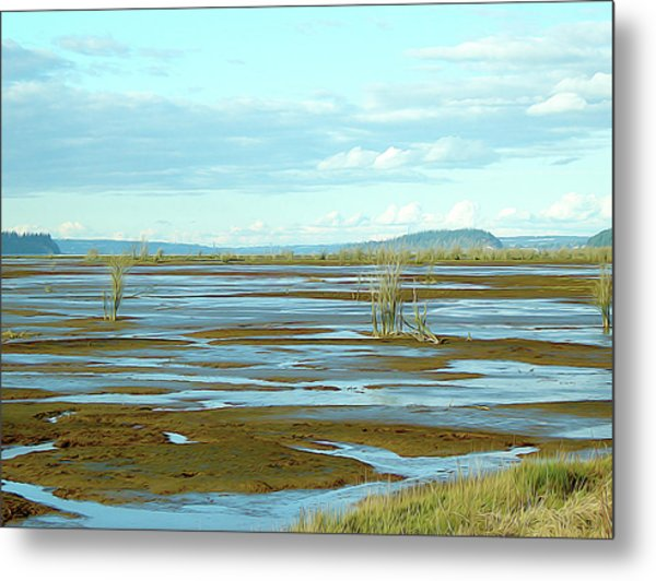 Nisqually Looking North Metal Print
