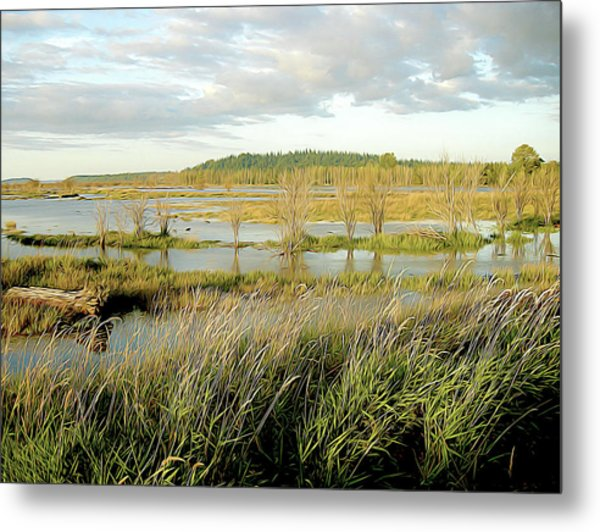 Nisqually Tide Coming In Metal Print