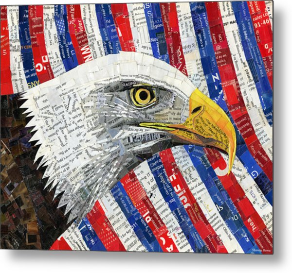 North American Bald Eagle Metal Print