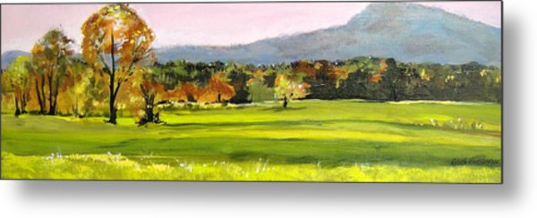 North Amherst View Metal Print