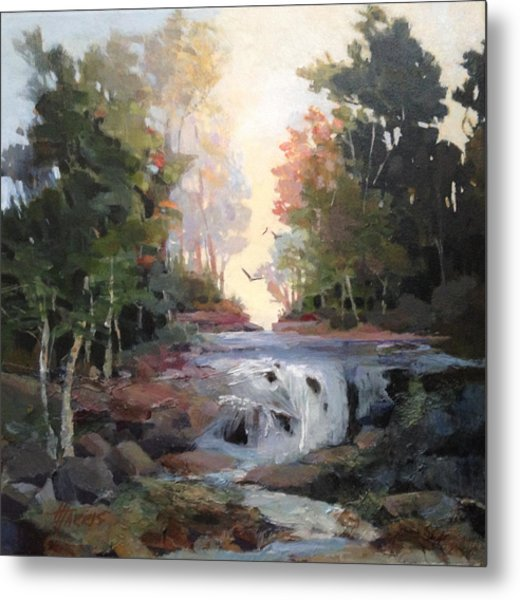 North Creek ...revisited Metal Print
