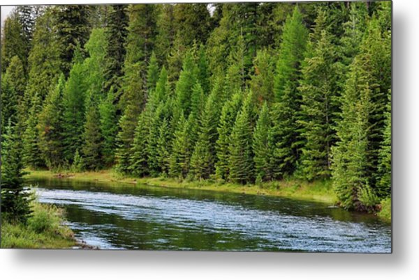 North Fork Of The Flathead Metal Print