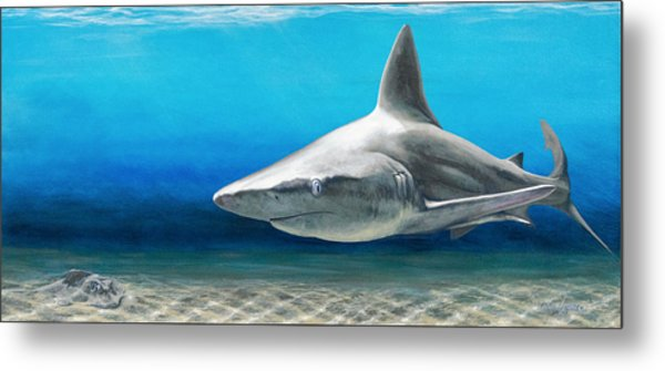 North Shore Sandbar Metal Print