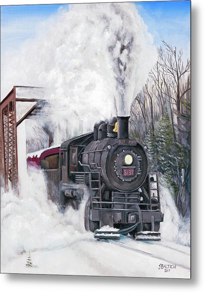 Northbound At 35 Below Metal Print
