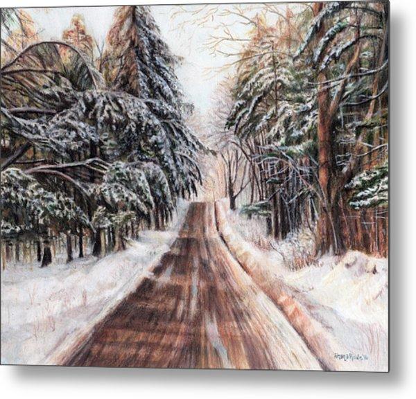 Northeast Winter Metal Print