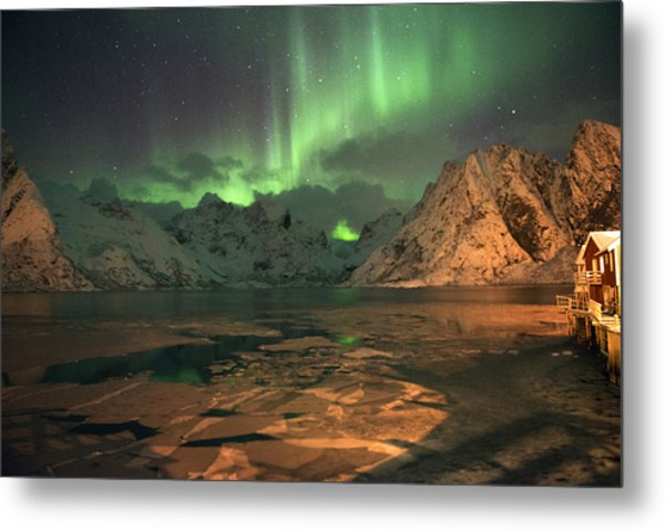 Northern Light In Lofoten, Nordland 1 Metal Print