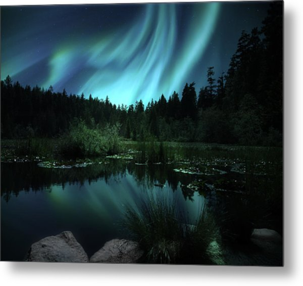 Northern Lights Over Lily Pond Metal Print