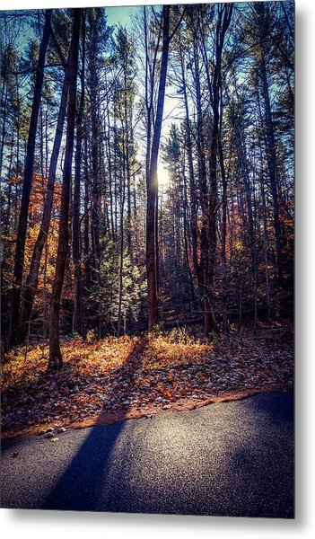 November Light Metal Print