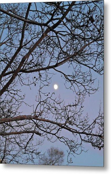 November Moon Metal Print