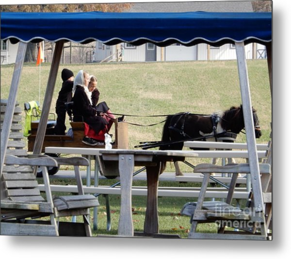 November Pony Cart Fun Metal Print