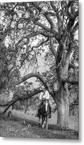 Oak Arches Metal Print