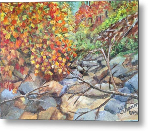 Oak Creek Canyon Metal Print