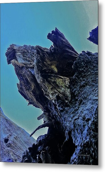 Oak Stump Metal Print